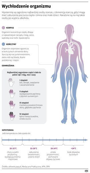 Wychłodzenie organizmu (PAP/Maria Samczuk, Adam Ziemienowicz)