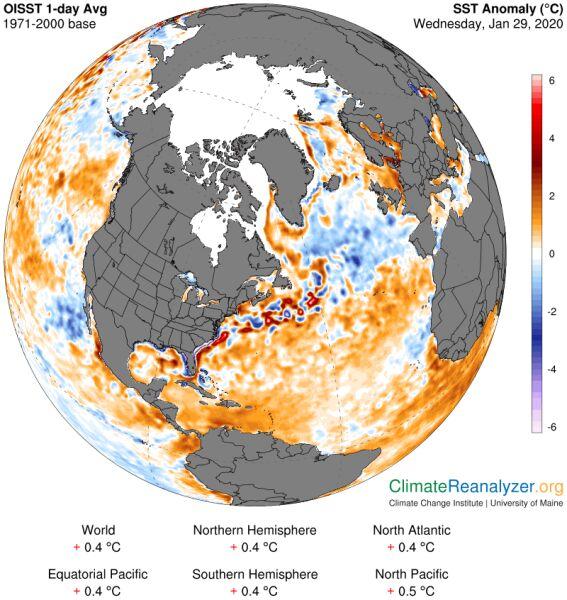 Odchylenie od normy temperatury wód powierzchniowych Atlantyku (University of Maine )