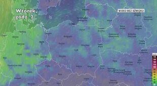 Prognozowane porywy wiatru w najbliższych dniach (Ventusky.com)
